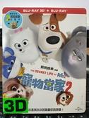 挖寶二手片-0Q01-239-正版藍光BD【寵物當家2 3D+2D雙碟版 附外紙盒】-卡通動畫(直購價)海報是影印