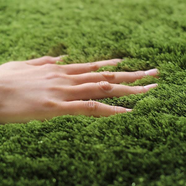 日本彷皮草綠地吸水地墊腳踏墊方587879通販屋