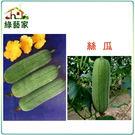 【綠藝家】G15.絲瓜種子20顆...