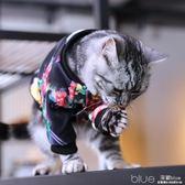 貓咪衣服美短英短幼貓舒適外出服飾秋冬服裝可愛加絨多彩印花衛衣 深藏blue