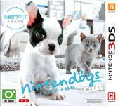 3DS 任天狗+貓 鬥牛犬與新夥伴(中文版‧台灣機專用)