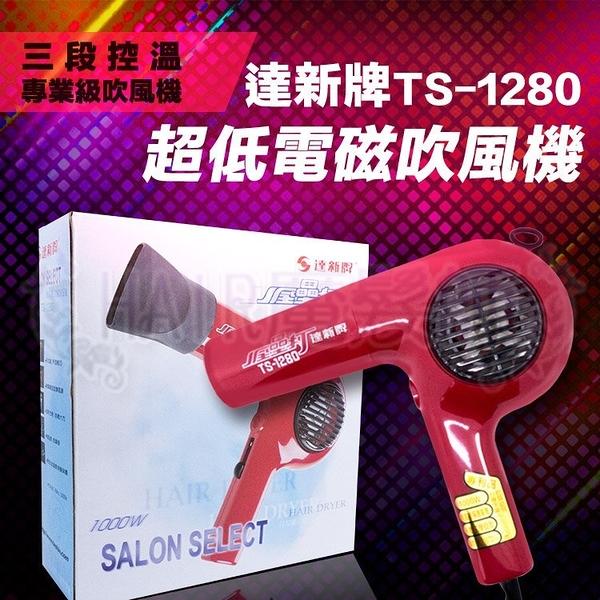 (現貨特價)達新牌TS-1280 超低電磁波 全壘打 專業級吹風機 *HAIR魔髮師*