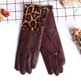 真皮手套-羊皮拼接豹紋長款修手女手套2款73wf10【巴黎精品】