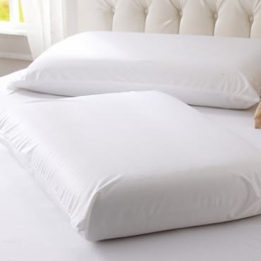 PAB極細纖維全密封式防水防蹣保潔墊 枕用二入
