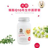 【哈維博士】犬用輔酶Q10再生修護膠囊 60顆裝 飼料營養添加