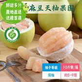 麻豆天柚果園 文旦保袖級(10斤裝/箱;約5~9個)含運組【766雜貨小舖】
