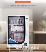 RTP68-KS消毒柜碗柜立式家用小型消毒柜壁掛式迷你消毒柜單門igo『韓女王』