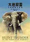 (二手書)大地寂雷-大象的聲音世界
