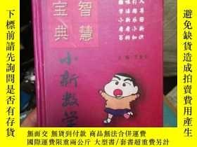 二手書博民逛書店罕見小新數學Y267097 王金平 吉林教育 出版2004