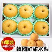 【WANG-全省免運】韓國特大XXL甜潤水梨禮盒X1盒(6顆/盒 每顆約500g±10%)