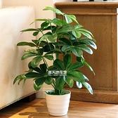 仿真植物盆栽搖錢葉盆栽室內假花裝飾綠植盆景假植物客廳裝飾擺件  HM