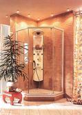 【麗室衛浴】德國HANSGROHE 淋浴柱PHARO 26045角落型立體定溫按摩淋浴塔( 門市樣品出清)