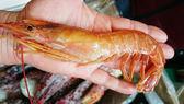 【明珠海產】粉嫩天使蝦(L)(約1200g∕盒)-含運價