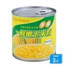 永偉易開罐玉米粒340gx3罐【愛買】...