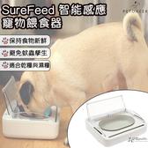 英國 SureFeed 智能 控制 主子 貓貓 狗狗 寵物 毛小孩 新鮮 餵食器