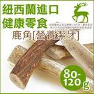 PetLand寵物樂園《紐西蘭天然寵物食品》100%鹿角 80 - 120g / 潔牙天然保養品