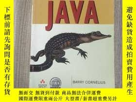 二手書博民逛書店Understanding罕見JavaY410278