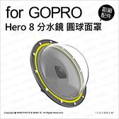 【可刷卡】Telesin GoPro Hero8 分水鏡 圓球面罩 附防水殼 30M防水 運動攝影機 副廠配件 薪創數位