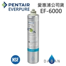 EF-6000 愛惠浦濾芯 贈7-11禮卷$300 EVERPURE 台灣愛惠浦 公司貨 濕式碳纖活性碳 EF6000 濾心