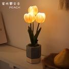 VIA-K Studio LED 仿真鬱...