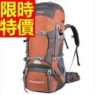 登山背包舒適簡單-露營健行大空間休閒後背包8色57w6【時尚巴黎】