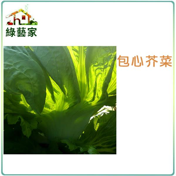 【綠藝家】大包裝A26.包心芥菜種子30克 (長年菜)
