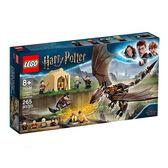 【LEGO 樂高 積木】LT-75946 哈利波特Harry Potter 匈牙利角尾龍三巫挑戰