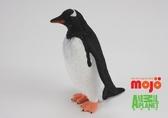 【Mojo Fun 動物星球頻道 獨家授權】 金圖企鵝 387184