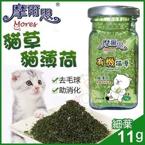 *KING WANG*摩爾思-貓草11g(細葉) /貓薄荷/貓零食/貓玩具/貓大麻/好消化/去毛球