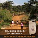 【咖啡綠商號】哥斯大黎加布蘭卡傑妮小農卡度艾種白蜜咖啡豆(半磅)