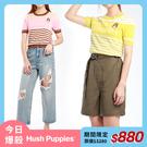 【今日爆殺】Hush Puppies 女裝撞色條紋字母緹花刺繡狗針織衫