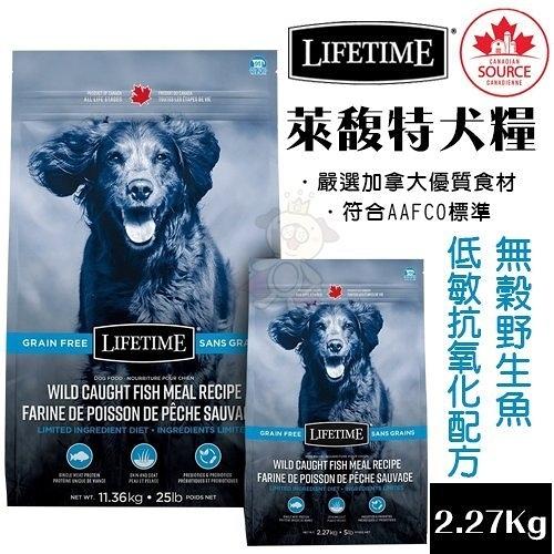 *KING* LIFETIME萊馥特 無穀野生魚-低敏抗氧化配方2.27Kg.特別添加益生元及益生菌.犬糧