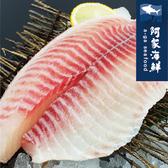【阿家海鮮】單背大鯛魚菲力片(240g±5%/包) 菲力魚 清蒸 無刺 魚排 熬粥 炸魚 台灣特選鯛 快速出貨