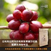 【咖啡綠商號】瓜地馬拉阿卡特南果聖費麗莎莊園藍鑽水洗咖啡豆(一磅)