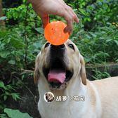 寵物浮水發聲耐咬球玩具中大型犬訓練彈力球拉布拉多狗狗互動玩具