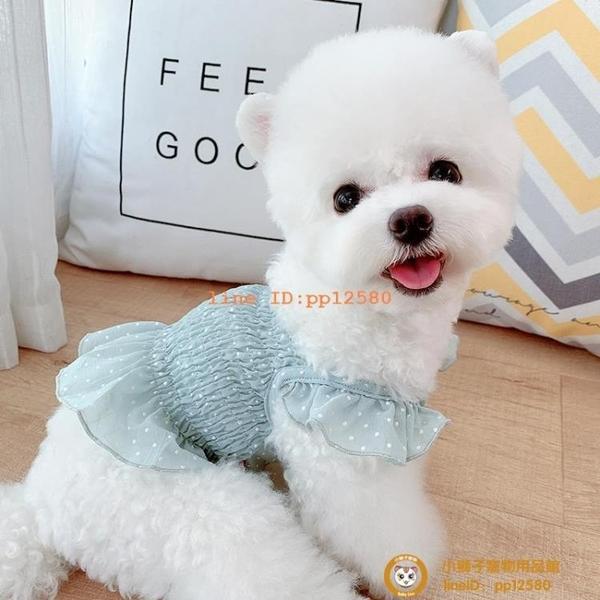 雪紡露臍韓版IG寵物狗狗貓咪公主裙泰迪比熊衣服夏季薄款小型犬小狗狗【小獅子】