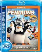 【停看聽音響唱片】【BD】馬達加斯加爆走企鵝3D單碟版