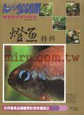 【西高地水族坊】AZOO書籍 觀賞魚大百科 燈魚特輯