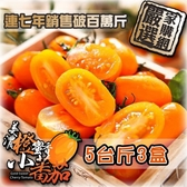 【南紡購物中心】家購網嚴選-美濃橙蜜香小蕃茄 5斤x3盒 連七年總銷售破百萬斤 口碑好評不間斷