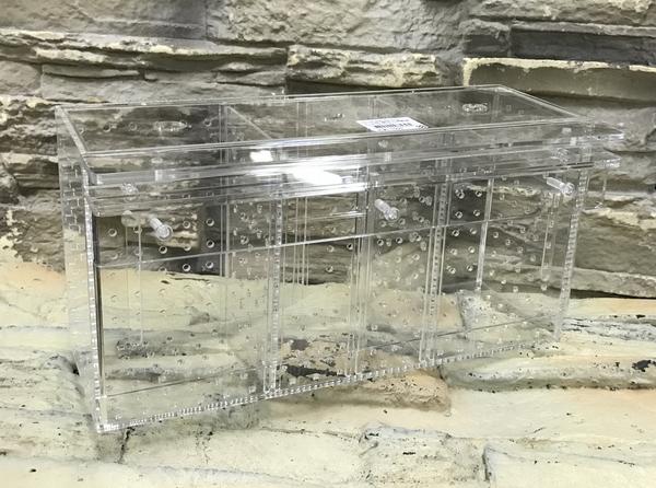 【西高地水族坊】台灣Leilih-鐳力 壓克力隔離盒 三格 30*10*15cm  飼育盒 繁殖盒