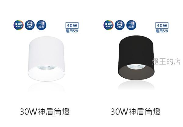 燈飾燈具【燈王的店】舞光 LED 30W 筒燈 白框/黑框 36° 神盾筒燈 全電壓 LED-CEA30