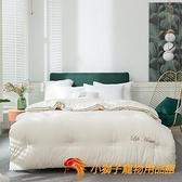 大豆纖維被子冬被加厚單雙人空調四季通用保暖棉被芯【小獅子】