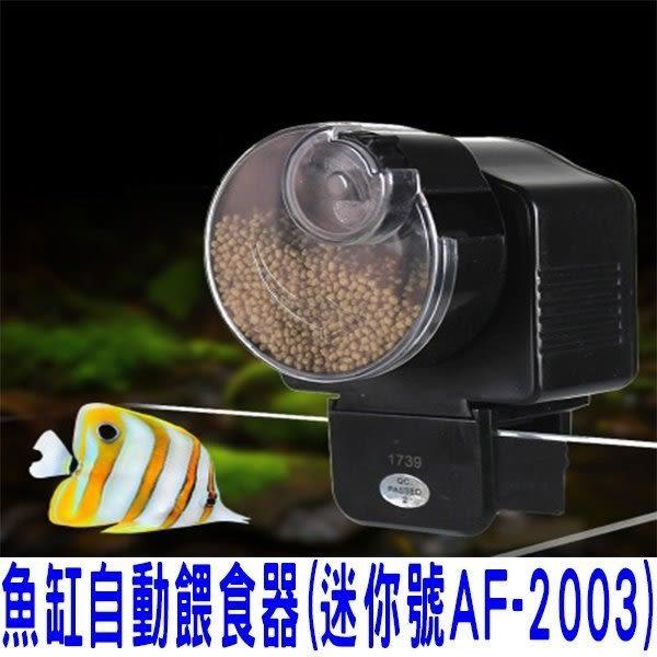 簡易型魚缸專用自動餵食器 定時餵食器 AF2003 投食器 水族箱必備 懶人餵食器 餵食飼料 孔雀魚