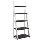 [COSCO代購 5976] 促銷至3月5日 W1414696 Bayside 五層梯形置物架
