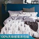 【eyah】台灣製100%萊賽爾天絲床包被套組-單/雙/大 均一價加大-喵 有流星