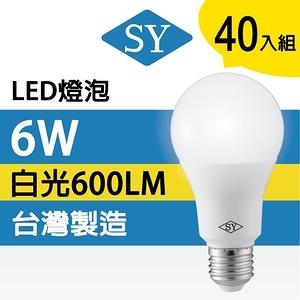 【SY 聲億科技】6W廣角LED燈泡 全電壓 E27(40入)白光白光