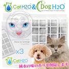 【培菓平價寵物網】Dog & Cat》H2O有氧濾水機2L專用活性碳濾棉(一盒3入)