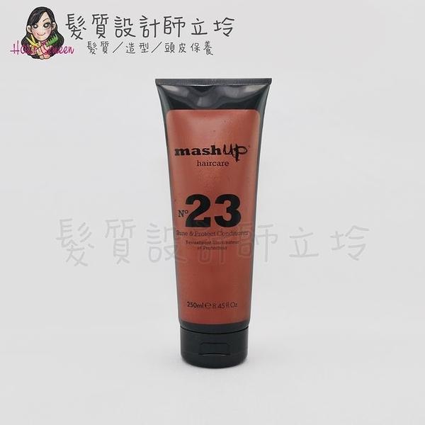 立坽『瞬間護髮』Mashup 日常保養系列 N23 鎖色潤澤護髮素250ml HH04