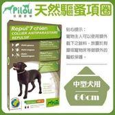 *WANG*【2入免運組】法國皮樂Pilou《天然驅蚤項圈-中型犬用》60cm