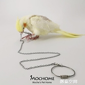 304不銹鋼鸚鵡腳鏈鳥鏈子活扣高級超輕防脫扣腳環玄鳳牡丹鸚鵡 NMS創意新品